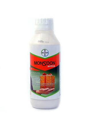 Monsoon active OD
