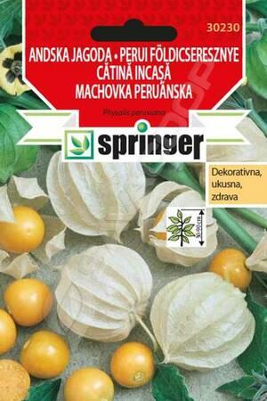 SPRINGER Lekovito bilje Andska jagoda-ukrasni Fizalis 0,2g 30230