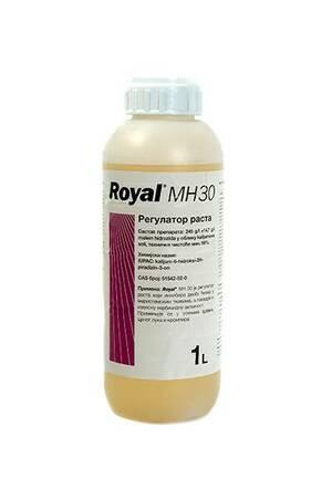 Royal MH-30