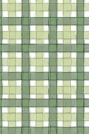 Mušema 1.4x20m C13/1 karirana zelena