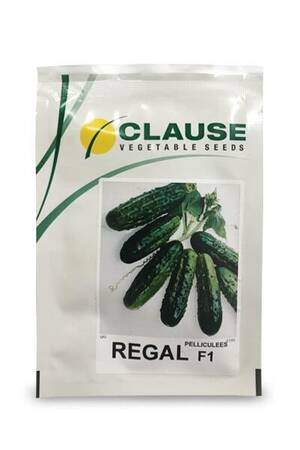 CLAUSE Kornišon Regal 10g